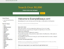Exampleessays website preview