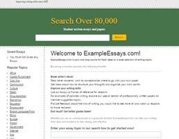 Exampleessays website preview