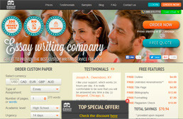 TopEssayWriting website preview